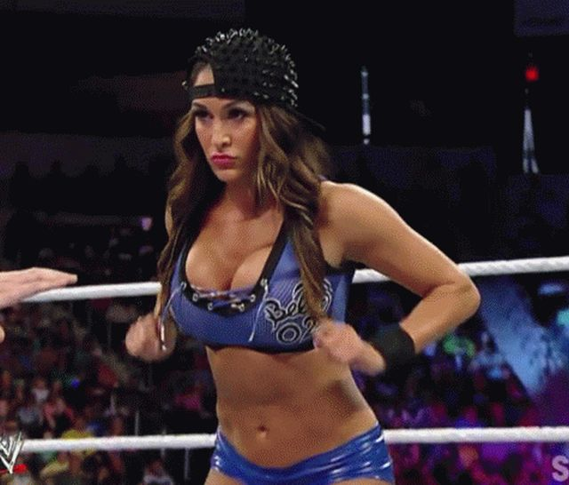 Hot Wrestling Girls (14 gifs)