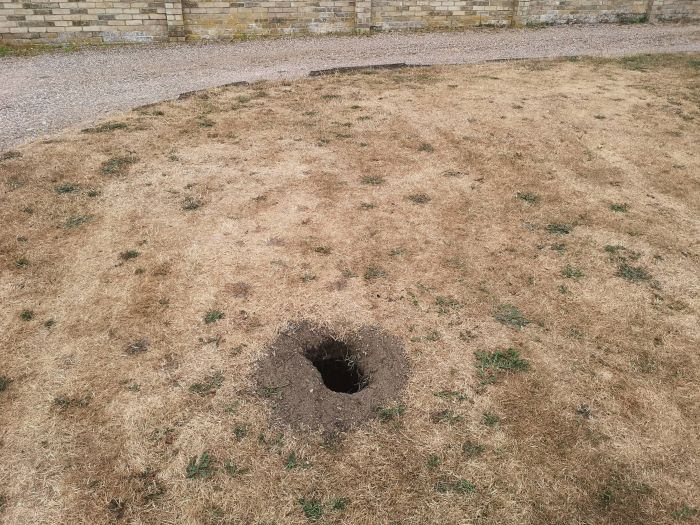 A Hole Opened Up In Garden And It Was A Brick Chamber (11 pics)