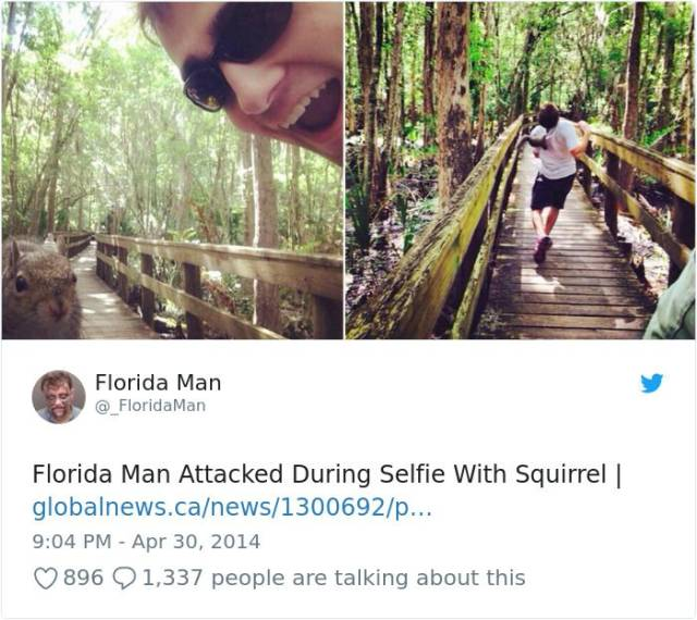 Florida Is A Strange Place (56 pics)
