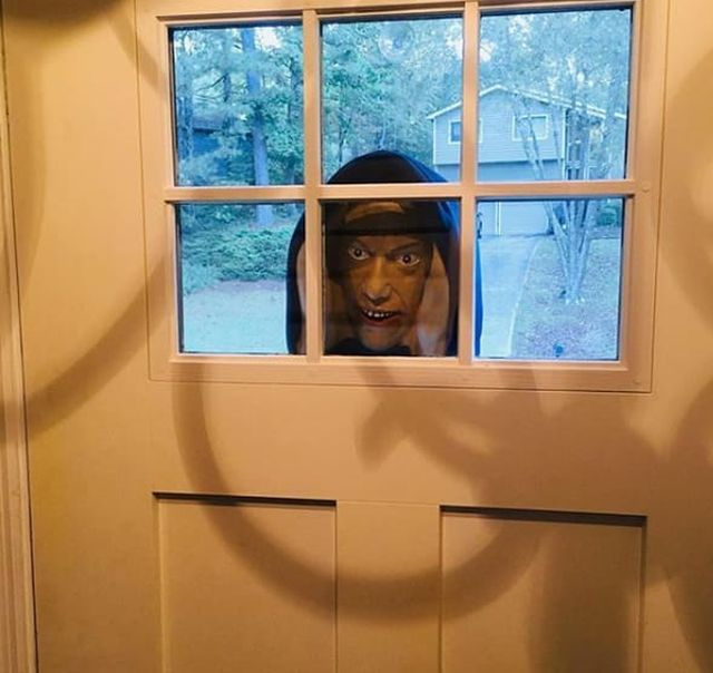 Rude Neighbors (14 pics)