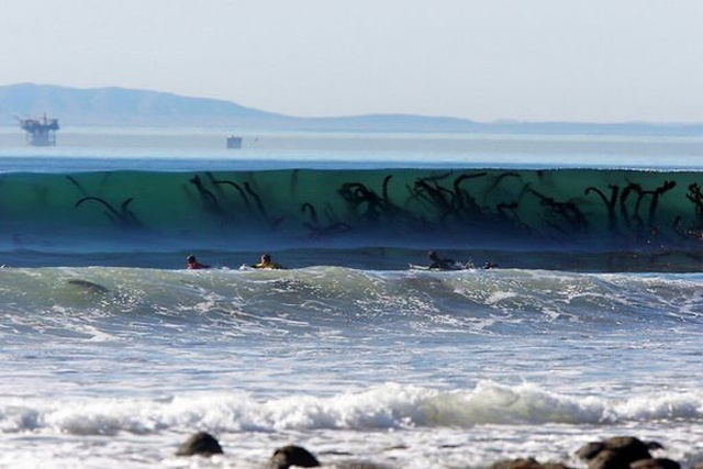 Nature Can Be Scary (34 pics)