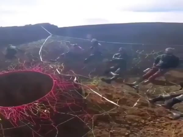 Space Net Base Jump