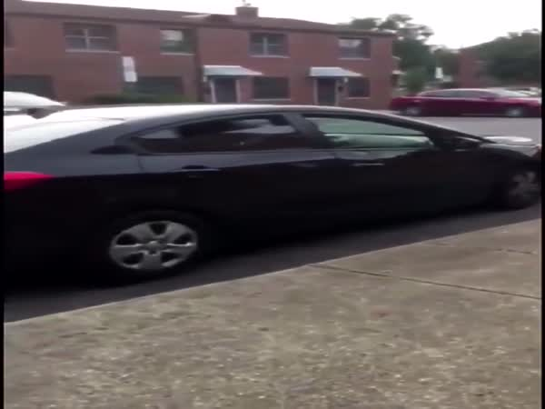 Lady Demonstrates Why You Don't Let Your Friends Drive Your Car