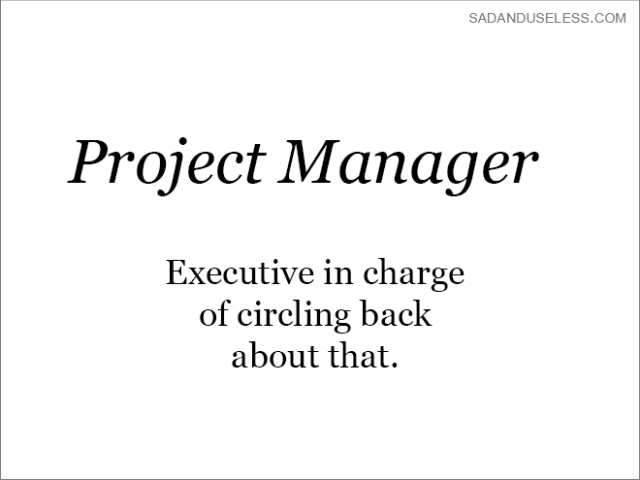The Real Meaning of Job Titles (20 pics)
