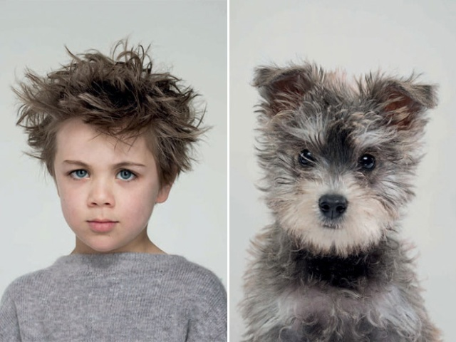 Photographer Puts Dogs And Their Owners Side By Side (10 pics)