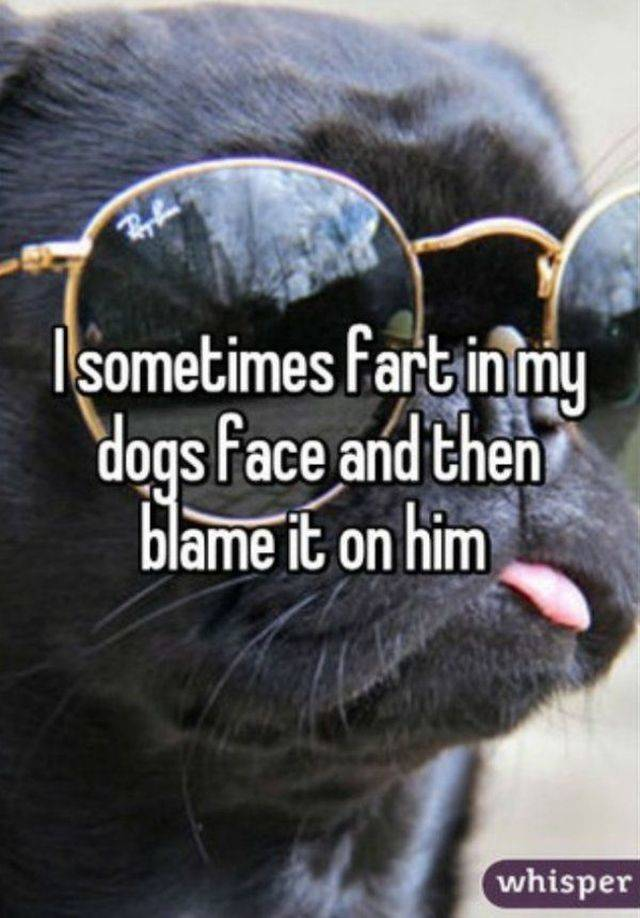 Fart Stories (27 pics)