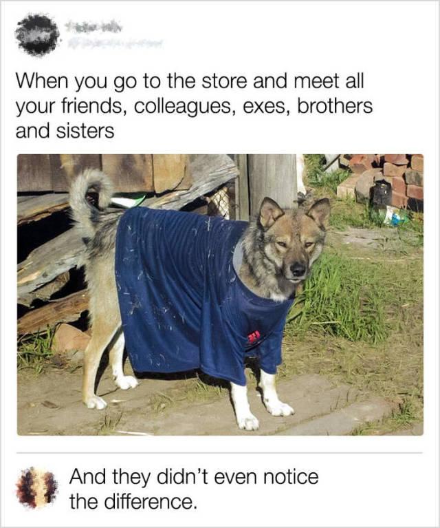 Smart Comments (22 pics)