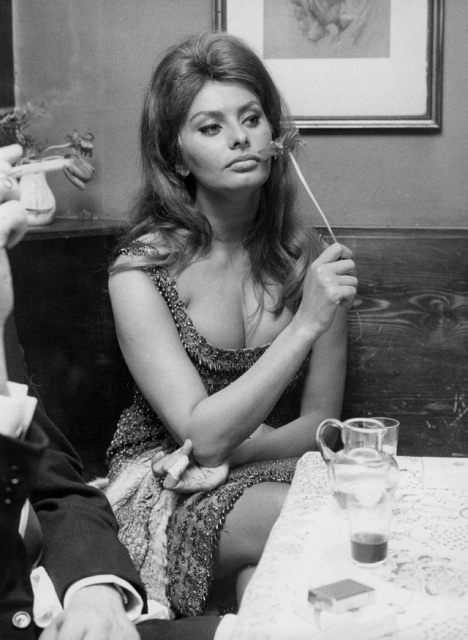 Beautiful Woman Sophia Loren (26 pics)