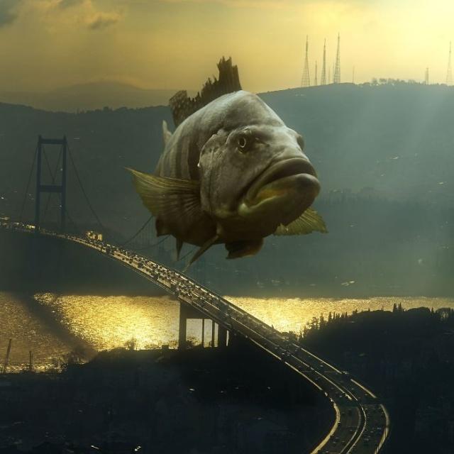 Surreal Animal Landscapes (21 pics)