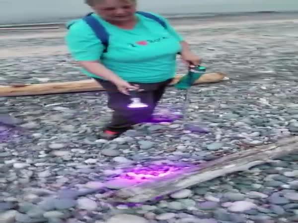 Picking Yooperlites On Lake Superior