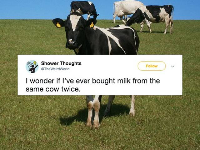Memes That Will Make You Think (19 pics)