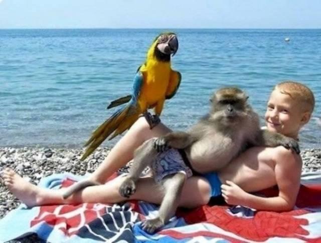 Funny Vacation Photos (20 pics)