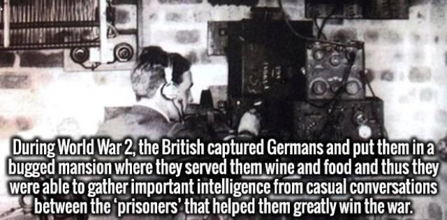 Interesting Facts (46 pics)