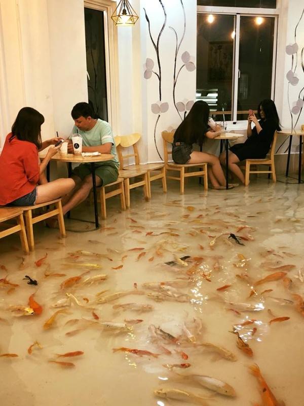 Very Unusual Restaurant in Vietnam (7 pics)
