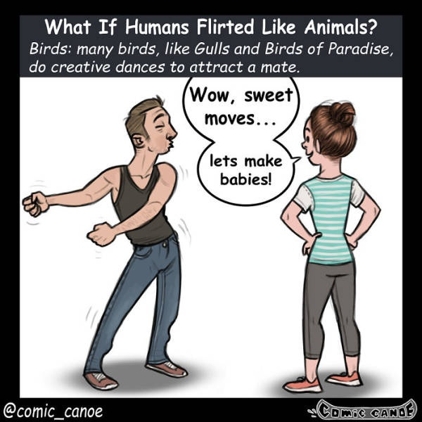 What If We Flirted Like Animals (9 pics)