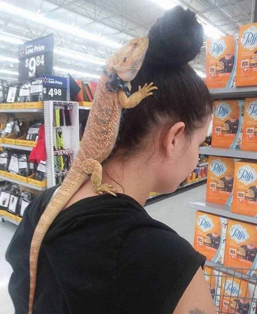 Only At Walmart (23 pics)
