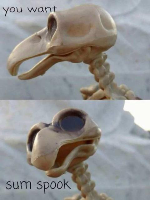 Eva lovia xander corvus