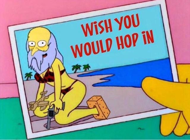 Simpsons Memes (17 pics)