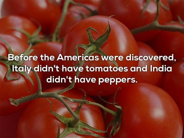 Interesting Facts (25 pics)