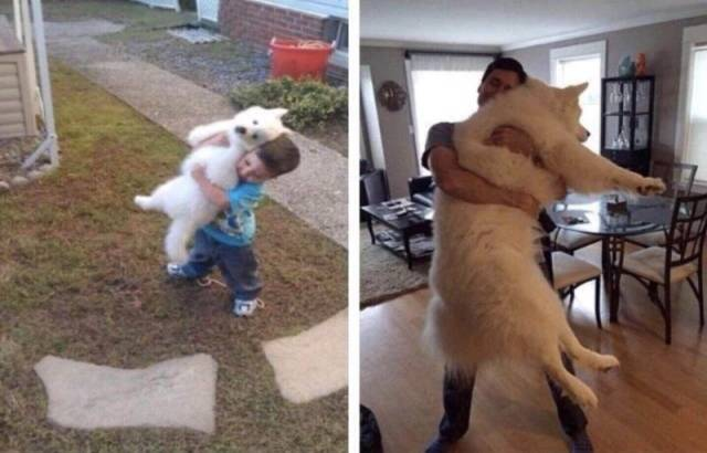 When A Picture Says More Than Just A Thousand Words (48 pics)