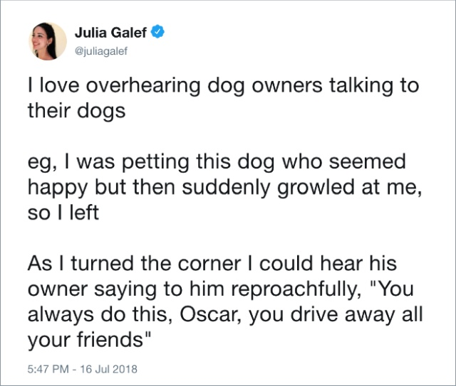 Funny Tweets About Dogs (20 pics)