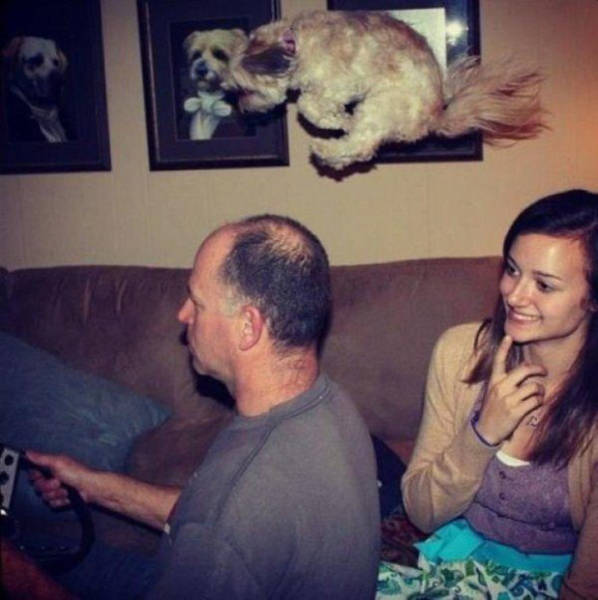 Perfectly Timed Photos (42 pics)