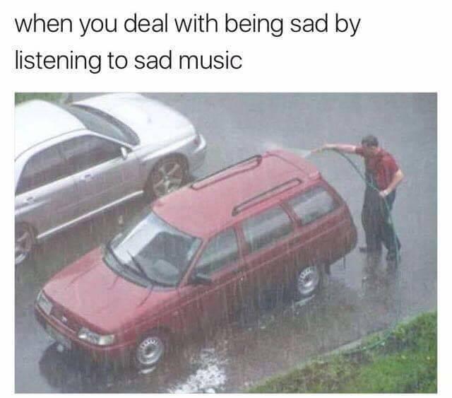 Self-Hate Memes (40 pics)