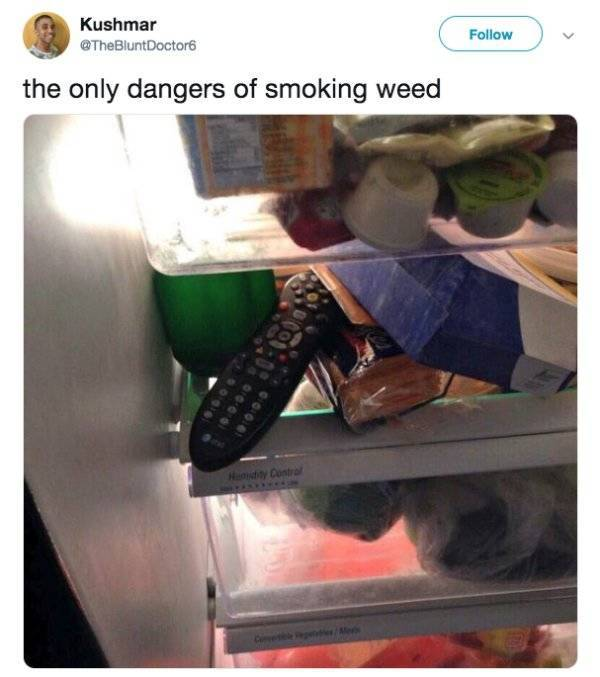 Memes About Weed (25 pics)