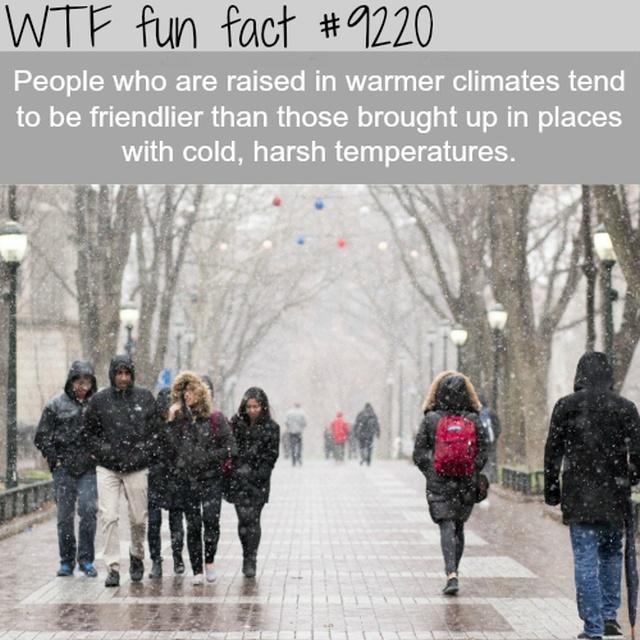 Interesting Facts (13 pics)