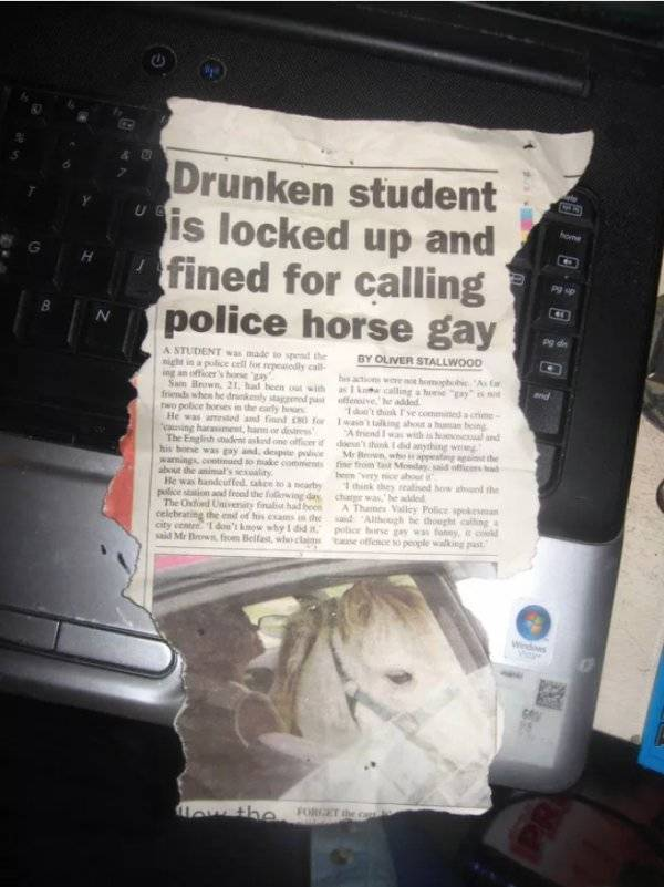 Unbelievable But Real Headlines (28 pics)