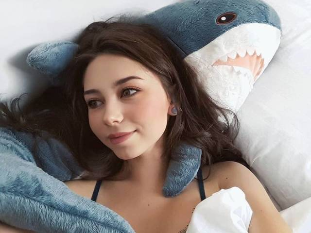 IKEA's New Plush Shark Is A New Hit (40 pics)