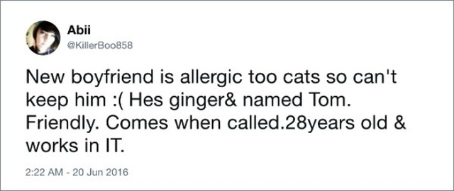 Funny tweets With Unexpected Endings (17 pics)