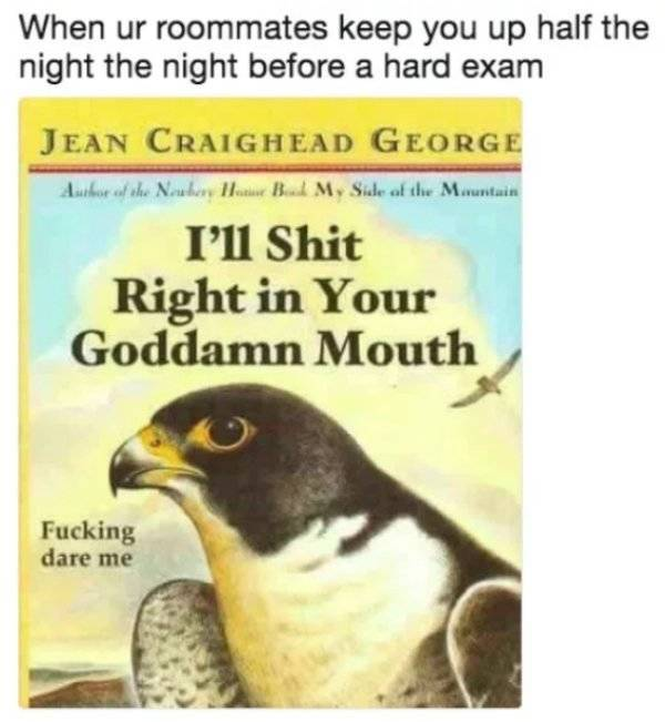 Roommate Memes (29 pics)