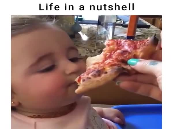 Life In A Nutshell