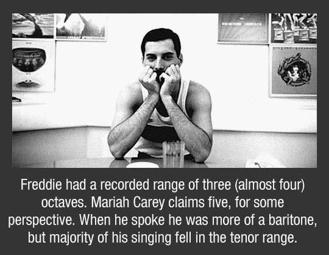 Freddy Mercury Facts (10 pics)