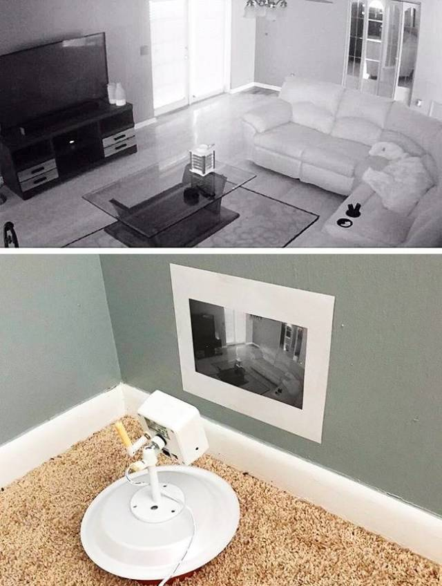 Creative Or Stupid? (59 pics)
