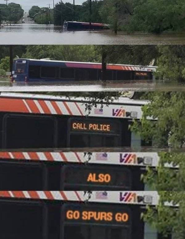 Buses As You Never Have Seen Them Before (35 pics)