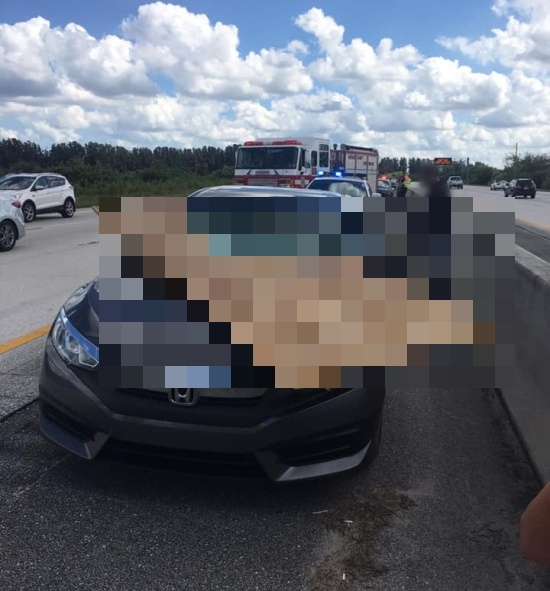 Florida Driver Is OK After This (2 pics)