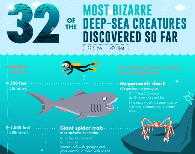 Bizarre Deep-Sea Creatures (infographic)