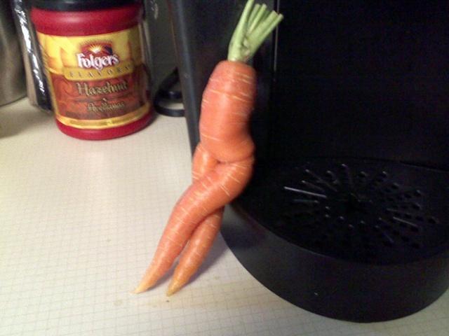 Seductive Carrots (20 pics)
