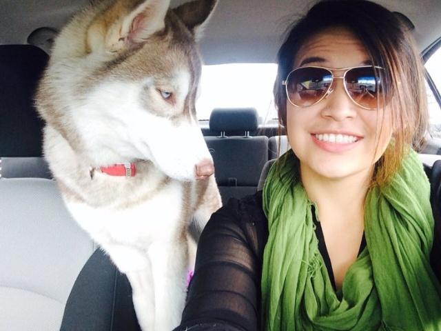 Pets Selfies (16 pics)