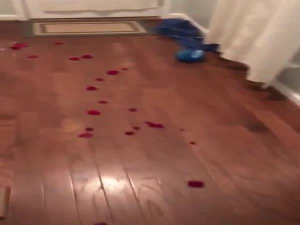 Romance Is Not Dead