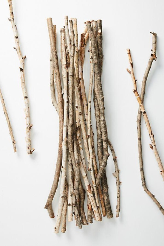 Very Expensive Bunch of Twigs (3 pics)