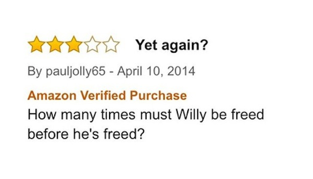 Bad Amazon Movie Reviews (29 pics)
