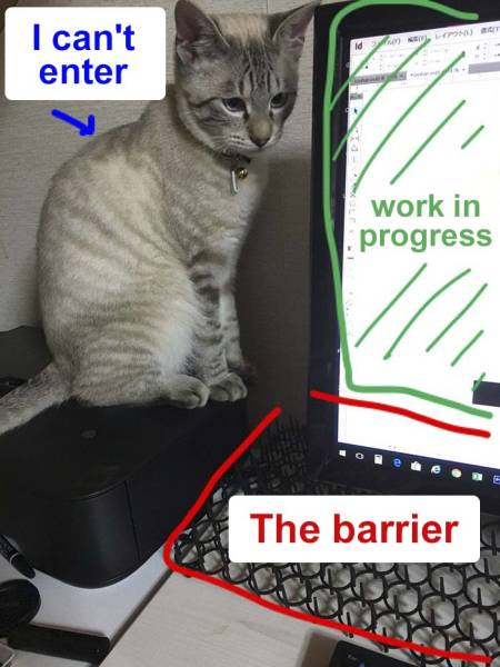 Cats Destroy Keyboards (18 pics)