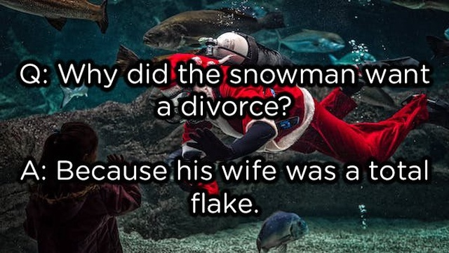 Funny Adult Christmas Jokes (20 pics)
