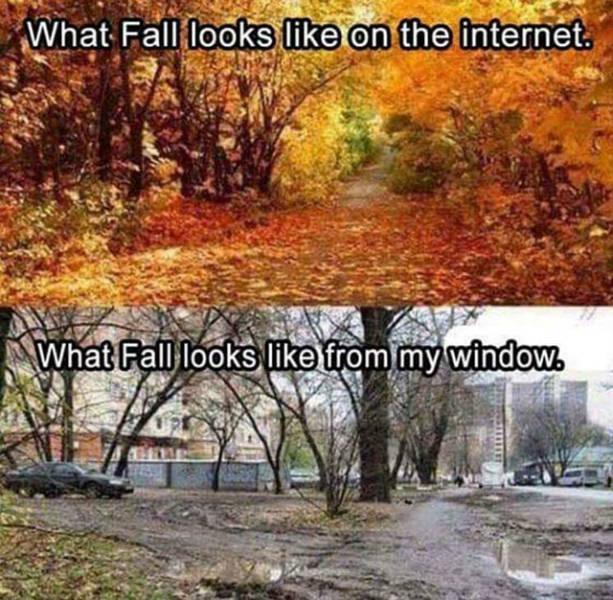 So True (36 pics)