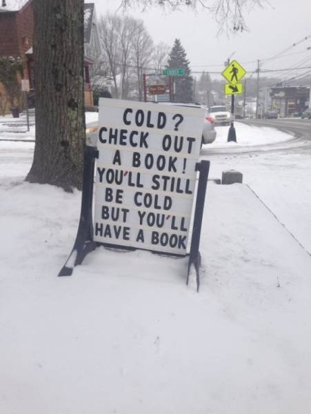 Librarians Can Be Funny (27 pics)