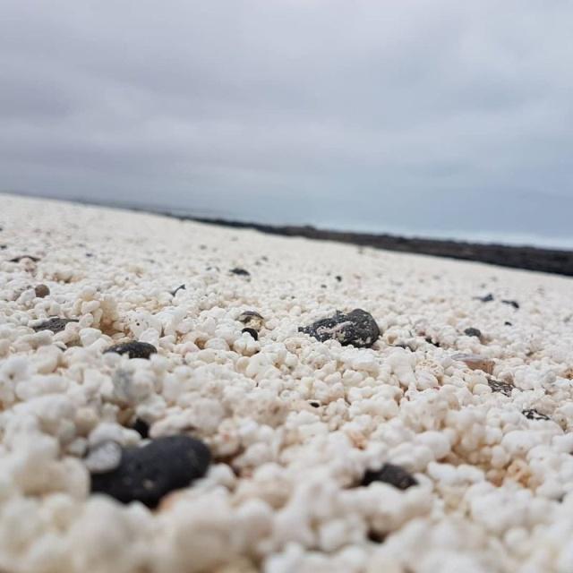 Popcorn Beach, Canary Islands (11 pics)