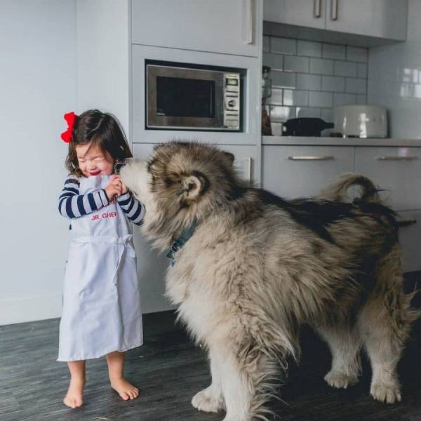 When A Picture Says More Than Just A Thousand Words (53 pics)